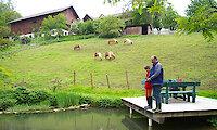 Angeln im Bayerischen Wald