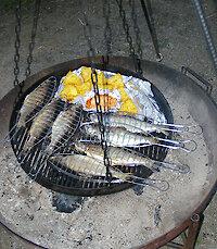 Fische grillen - Ferienhof im Bayerwald
