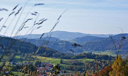 herrliche Naturlandschaft im Bayerischen Wald